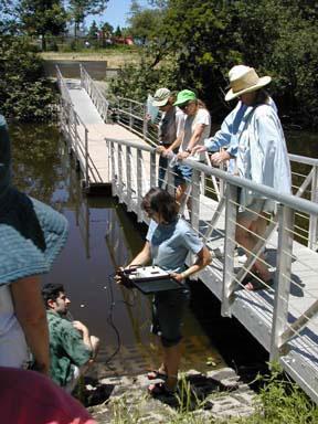 CCWI citizen monitoring training on the Laguna de Santa Rosa